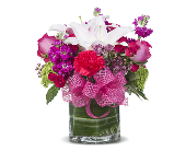 FABULOUS FUSCHIA in Gainesville FL, Floral Expressions Florist