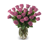 Two Dozen Roses - Special Price in Indianapolis IN, McNamara Florist