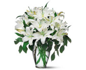 Perfect White Lilies in Hartford WI, Design Originals Floral
