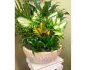 Custom Design in Charlotte NC, Starclaire House Of Flowers Florist