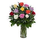 Dozen Roses - Mix it up! in Sheridan WY, Annie Greenthumb's Flowers & Gifts