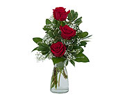Simply Roses in Methuen MA, Martins Flowers & Gifts