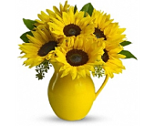 Sunny Day Pitcher Of Sunflowers in Smyrna GA, Floral Creations Florist