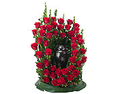Royal Rose Surround in Methuen MA, Martins Flowers & Gifts