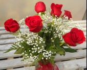 Classic Red Roses Half Dozen