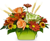 Autumn Greetings<br>by Nature Nook� in Cleves OH, Nature Nook Floral Center