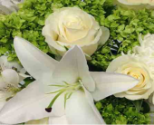 Sympathy Arrangements in London ON, Posno Flowers