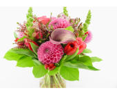 Crushin� On You in North Vancouver BC, Special Moments Flowers And Gifts