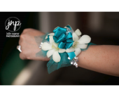 Winchester Flowers - White Dendrobium Corsage - Flowers By Snellings