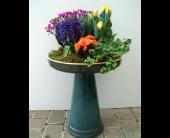 BIRDBATH & PLANTS in Cincinnati, Ohio, Robben Florist & Garden Center