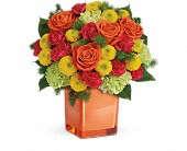 Teleflora's Citrus Smiles Bouquet in Rush NY, Chase's Greenhouse