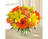 Vibrant Views Bouquet  in Smyrna GA, Floral Creations Florist