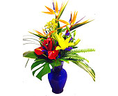 Island Tropicals in Baltimore MD, Raimondi's Flowers & Fruit Baskets