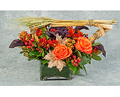 Harvest Husk in Great Neck NY, United Floral