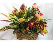 Flower And Plant Basket in Smyrna GA, Floral Creations Florist