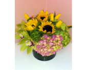 Sunny Cymbidium Arrangement in San Francisco CA, Fillmore Florist
