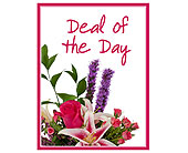 Deal of the Day in Lake Elsinore CA, Lake Elsinore V.I.P. Florist