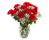Classic Carnations in New Glasgow NS, McKean's Flowers Ltd.