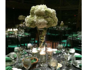 Green and White in Dacula GA, Flowers and More