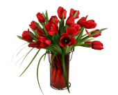 Red Hot Tulips in Carmel IN, McNamara Florist