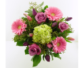 In the pink in North Vancouver BC, Special Moments Flowers And Gifts