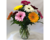Gerbera Garden in Charleston IL, Noble Flower Shop