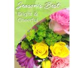 Season's Best Bright & Cheerful