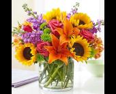 Sarasota Flowers - Floral Embrace - Oneco Florist