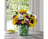 Sunlit Meadows� Bouquet by Better Homes and Garden in Kingston ON, Pam's Flower Garden