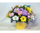 Spring Daisy Bouquet in Hollidaysburg PA, Warner's Florist Gifts & Greenhouse