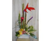 Up and to the Right in Dallas TX, Petals & Stems Florist