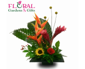 Sunrise Dance in Palm Beach Gardens FL, Floral Gardens & Gifts