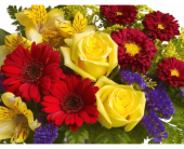 Bold & Beautiful in Flemington NJ, Flemington Floral Co. & Greenhouses, Inc.
