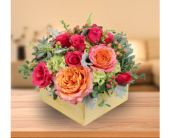 Flourish Deluxe in Dallas TX, In Bloom Flowers, Gifts and More