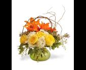 Redmond Flowers - You Are My Sunshine - Ballard Blossom, Inc.