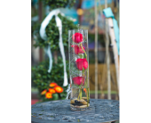 Rose Cylinder with a Twist in Burlington WI, gia bella Flowers and Gifts