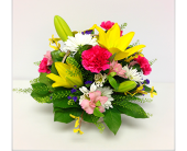 Posy Basket in London ON, Posno Flowers