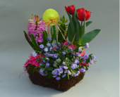Spring Bulb Basket in Utica NY, Chester's Flower Shop And Greenhouses