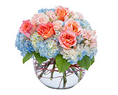 Peaches and Dreamy in Sault Ste Marie MI, CO-ED Flowers & Gifts Inc.