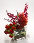 New Yorker in New York NY, Starbright Floral Design