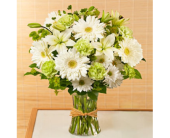 Serene Expressions in Largo FL, Rose Garden Flowers & Gifts, Inc