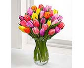 Rush of Color Assorted Tulip Bouquet in Wilmington NC, Creative Designs by Jim