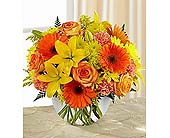 The FTD� Vibrant Views� Bouquet in Wilmington NC, Creative Designs by Jim
