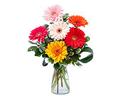 Conroe Flowers - Colorful! - Wildflower Florist