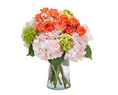 Carmel Mountain Flowers - Beauty in Blossom - Poway Country Florist