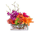 Fort Pierce Flowers - Powerfully Prismatic - Giordano's Floral Creations