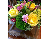 Kettering Flowers - Bright Yellow Spring - Far Hills Florist