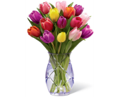 Chic Tulip Vase in Grand-Sault/Grand Falls NB, Centre Floral de Grand-Sault Ltee