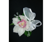 White N Pink Orchid  in Maple ON, Jennifer's Flowers & Gifts