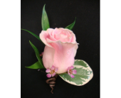 Pink Rose  in Maple ON, Jennifer's Flowers & Gifts